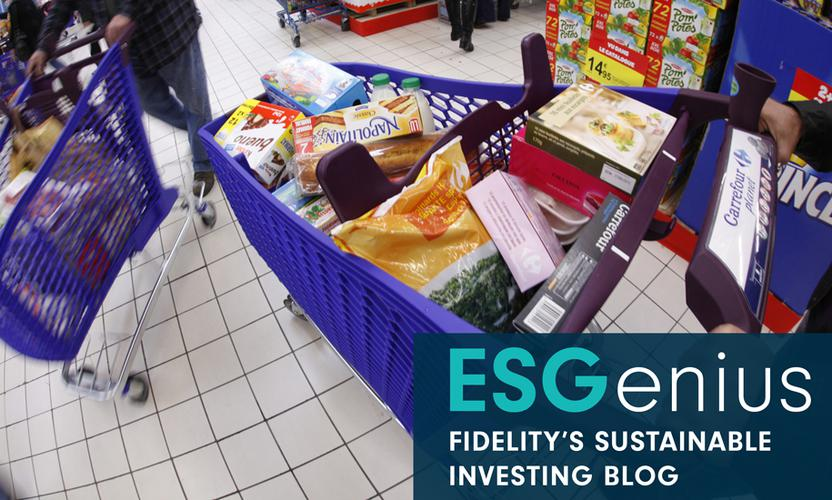 ESGenius: What sustainability investors can learn from European consumer st...