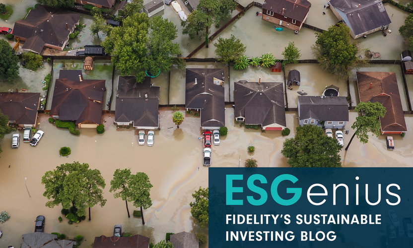 ESGenius: Insurance companies neglect sustainability at their peril
