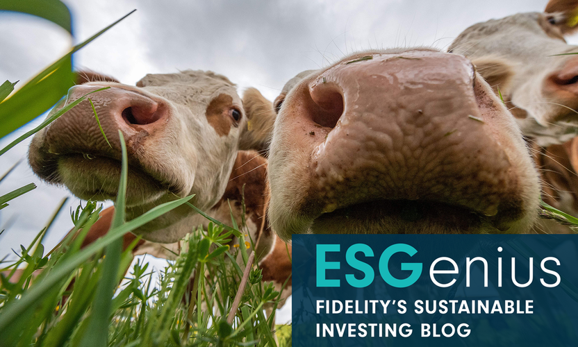 ESGenius: Cows, methane and the climate threat